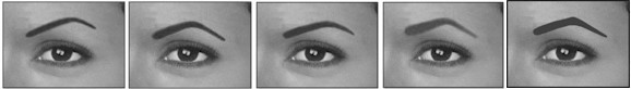 angled eyebrows for round face shapes