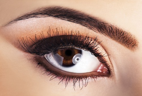Woman brown eye closeup